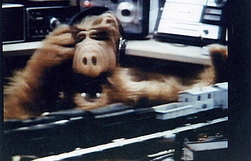 is Alf a Ham ? (sea the TS-700 in the background)